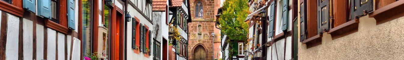Geplante Ortsfamilienbücher und Kirchenbuchabschriften in der Pfalz