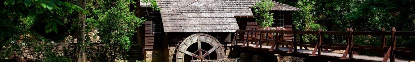 Pfälzisches Mühlenlexikon